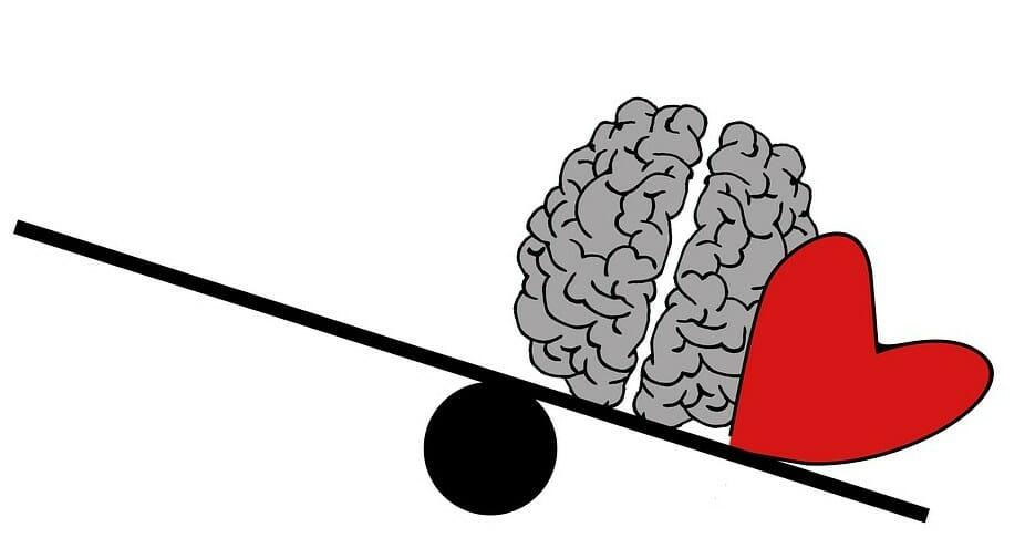 感情と頭脳